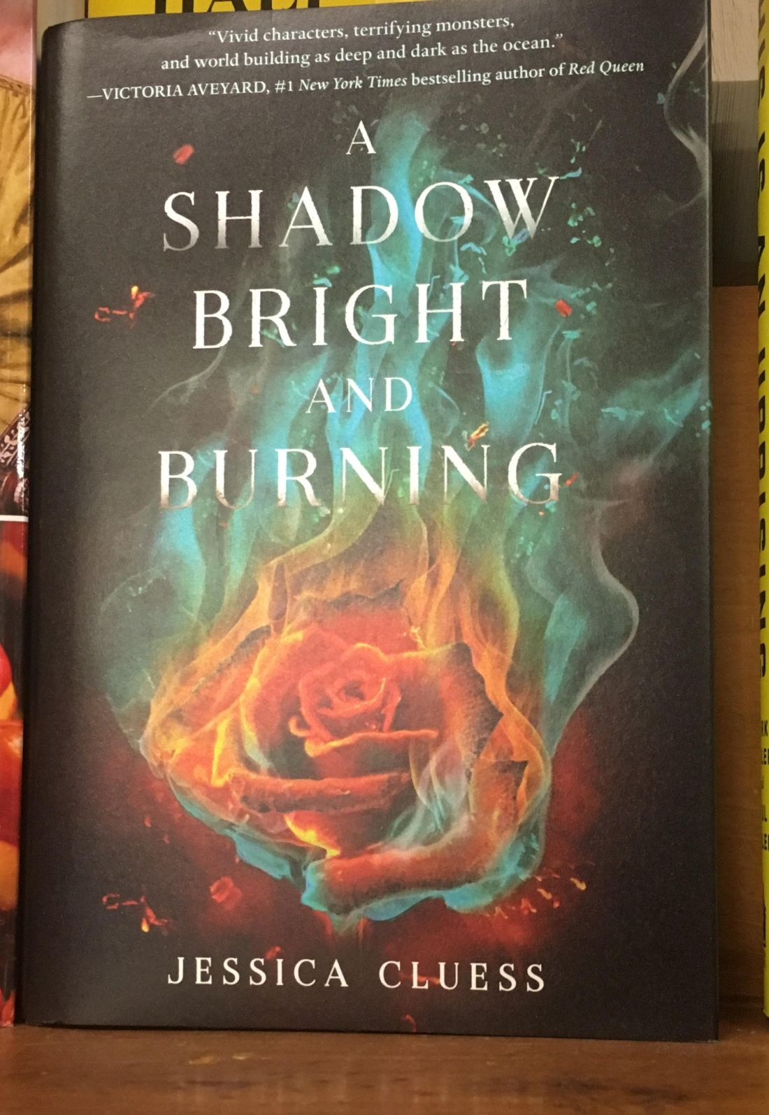 a shadow bright and burning pdf